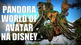 Pandora World of Avatar - tudo sobre a nova área no Animal Kingdom
