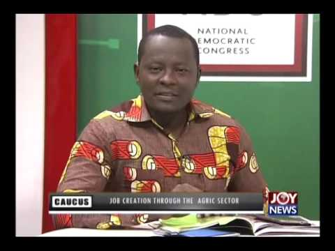 Job Creation Through Agric Sector - Majority Caucus on Joy News (1-6-16)