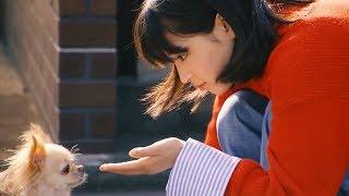 廣瀨鈴FUJICOLOR 照片年賀狀「在戍年和小狗製作年賀狀」篇+ 拍攝花絮【...
