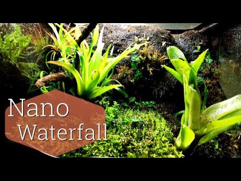 How to: Build A Terrarium waterfall (exo terra Nano)