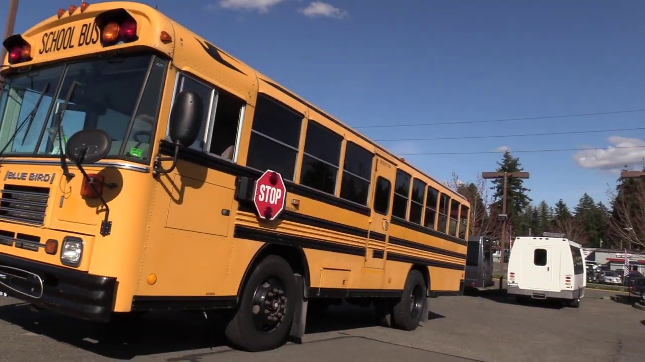 2003 Bluebird TC2000 48 Passenger School Bus - B08984