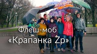 В память о событиях трехлетней давности в Запорожье устроили флешмоб с зонтиками - Цензор.НЕТ 3120