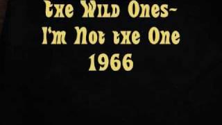 The Wild Ones I