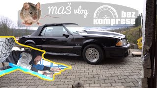 Mustang, Fabia, Peugeot - Sype se to - Miš maš vlog_13