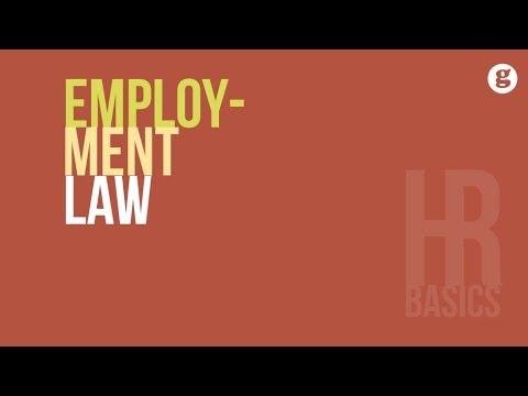 HR Basics: Employment