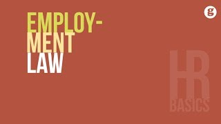 HR Basics: Employment Law
