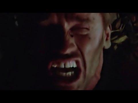 The Predator: An