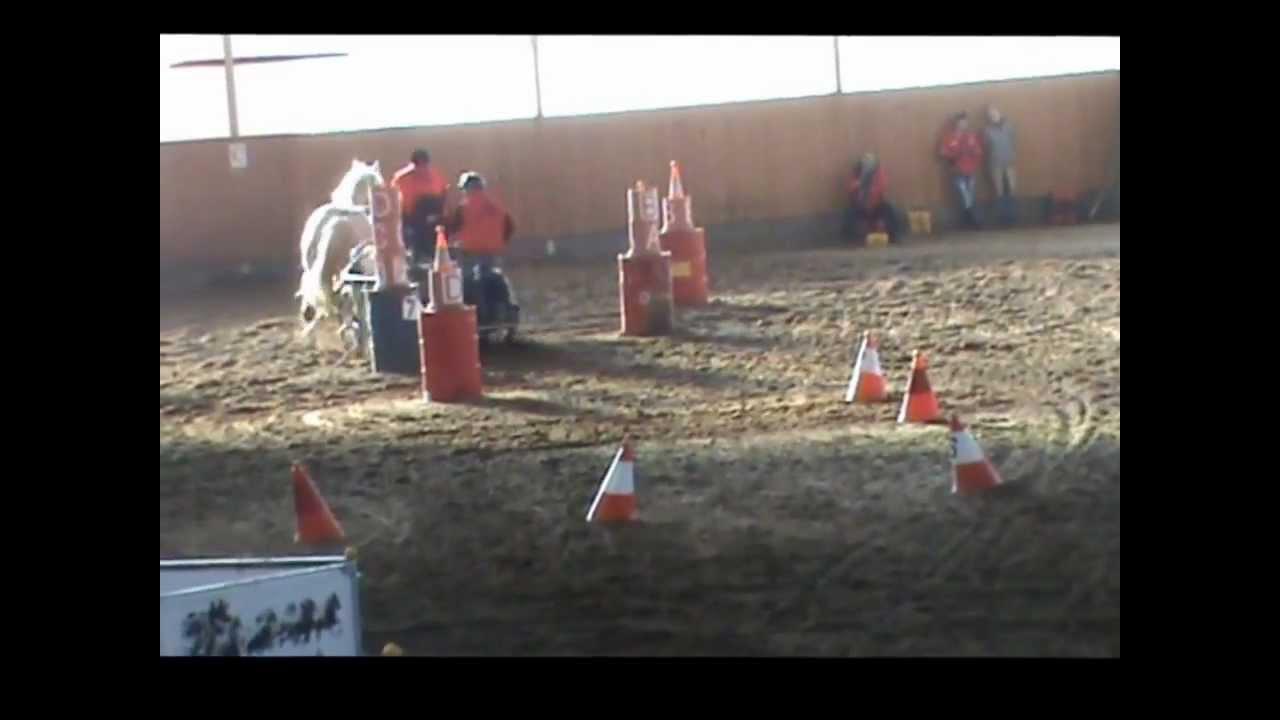 Finále vozatajského poháru 2013 - Ranč Ladná