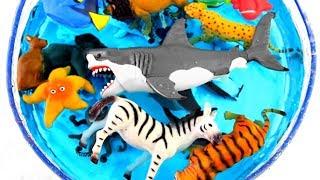 Learn Zoo Animal and Sea Animal Names For Kids Animal Planet Educat...