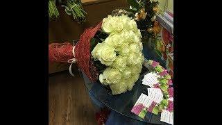 заказать комнатные цветы почтой наложенным платежом недорого