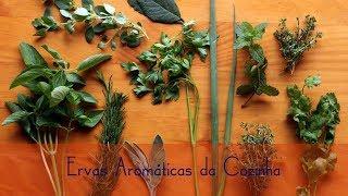 Conheça todas ervas aromáticas da cozinha