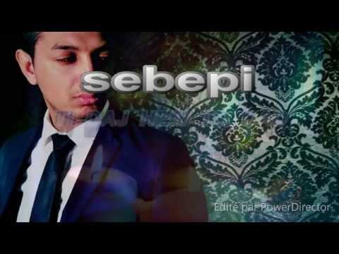 Mr.Nelly *ka Saj Lji Te Bistra* (romano Rap 2015/2016)