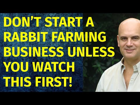 How To Start A Rabbit Farming Business   Including Free Rabbit Farming Business Plan Template