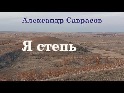 Александр Саврасов - Я степь
