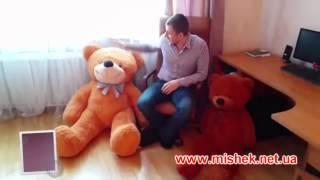 большие плюшевые мишки от производителя mishek.net.ua(, 2014-09-30T05:55:42.000Z)