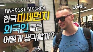 한국 미세먼지 해외반응 외국인들은 어떻게 생각할까? 그들의 충격 인터뷰, 외국인 반응 : We Had an Interview About Fine Dust In Korea