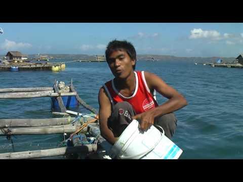 Lombok - my office on the sea (1/2)