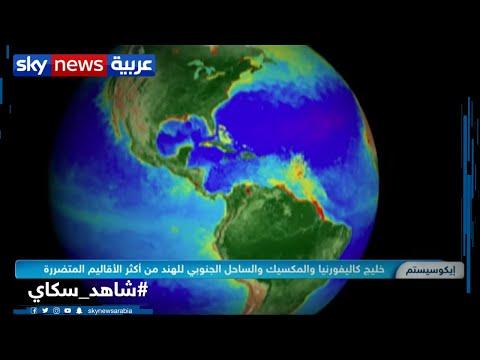 الأرض قد تواجه ارتفاعا فى الرطوبة والحرارة يتجاوز تحمل البشربالرغم من تخفيف الأنشطة بعد كورونا  - نشر قبل 4 ساعة