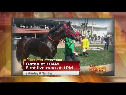Rillito Park Racetrack - Horse Racing