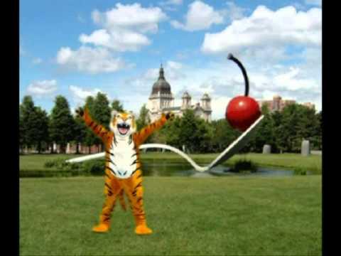 Tiger Traveling Through Minnesota