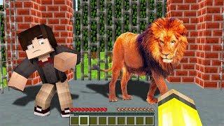 Gambar cover ASLAN KAFESİNİN İÇİNE GİRDİK! 😱 - Minecraft