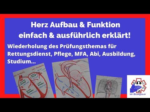 RD PRÜFUNGSWISSEN: Herz umfassender erklärt! Anatomie & Physiologie ...