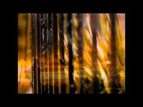 Hudson Bell -- Slow Burn
