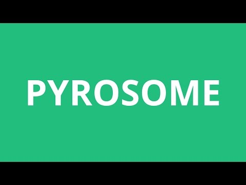 How To Pronounce Pyrosome - Pronunciation Academy
