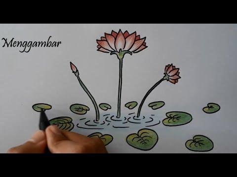 Cara Paling Mudah Menggambar Bunga Teratai Yang Cantik Beserta Mewarnainya