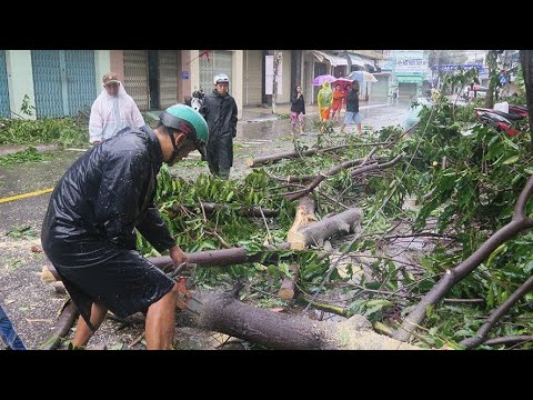Several dead as Typhoon Damrey batters Vietnam
