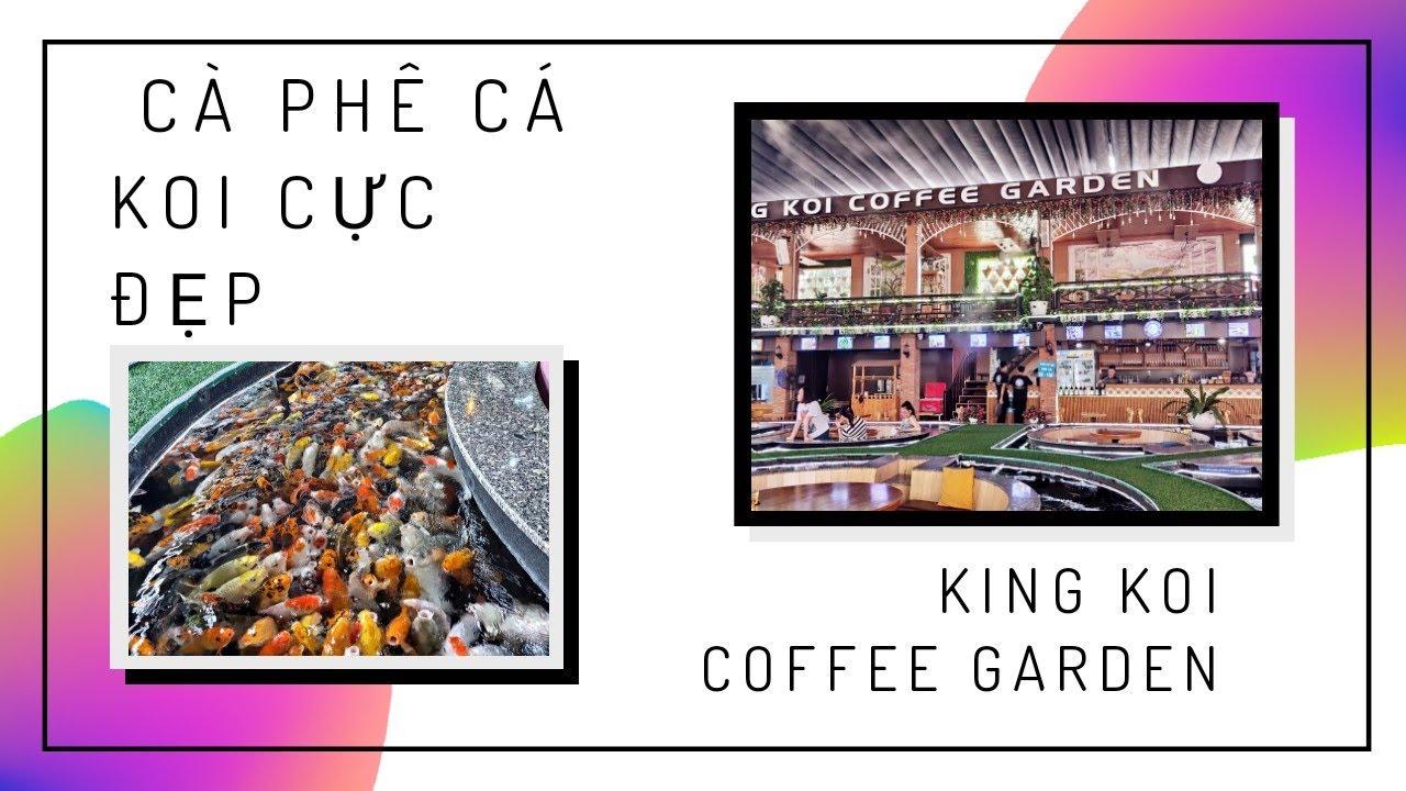 Cà phê cá Koi đẹp như thủy cung/King Koi Coffee Garden/Du ...