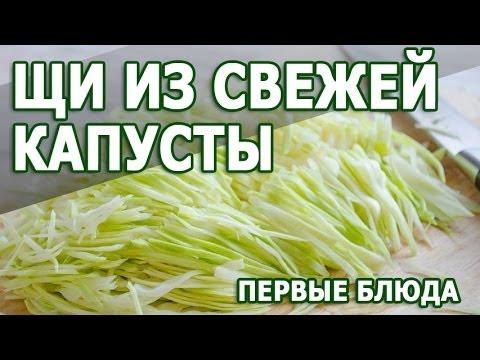 рецепты первых блюд с фото