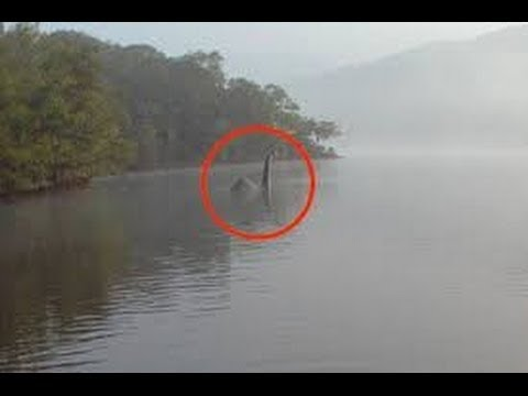 Monster discovery in loch ness lake Monster documentary You Tube i