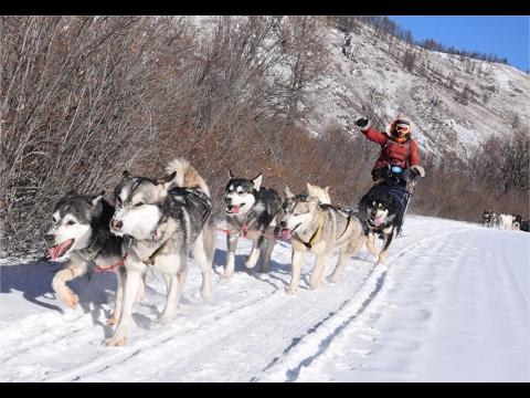 Winter Trip in Mongolia