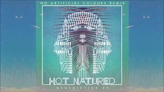 Hot Natured - Benediction (No Artificial Colours Remix) Thumbnail