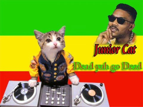 Junior Cat - Dead Yuh a go Dead