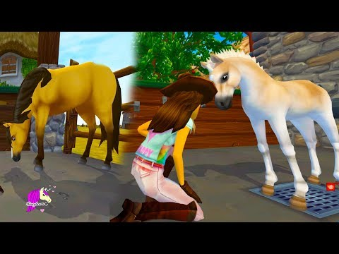 Help The Hurt Foal ! Vet Care Rescue Ranch Quest Star Stable Online Game Video