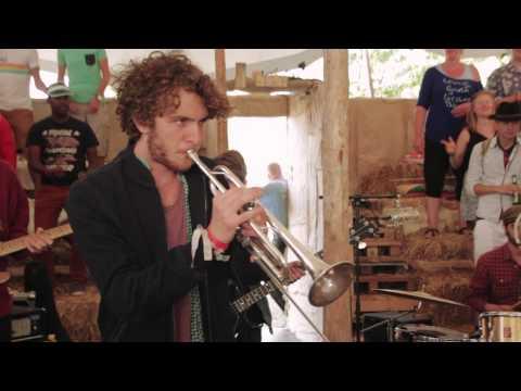Jungle by Night - El Miraglo (Village Sessions)
