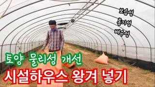 시설하우스(참외) 왕겨 넣기/토양 물리성 개선(배수성/…