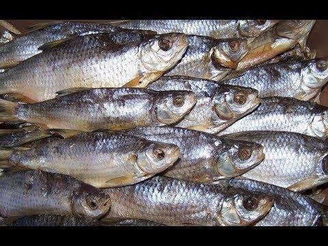 Как правильно солить рыбу. Засолка рыбы. Осторожно - червь солитер!