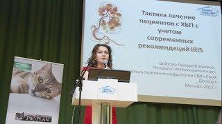 Конференция 2017.05.17 Доклад Войтовой Лемары Юрьевны
