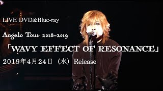 Angelo 2019.4.24 Release LIVE DVD & Blu-rayより「ACTIVATE RESONATE」