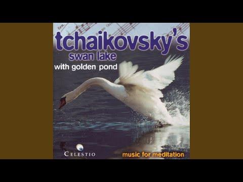 Hungarian Dance - Ungarischer Tanz - Schwanensee (P.I. Tchaikovsky / Ballet Suite From Swan...