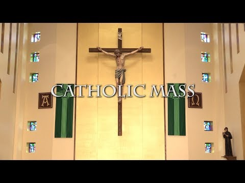 Catholic Mass for March 3rd, 2019: The Eighth Sunday of Ordinary Time