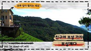 전남 보성 관광명소 초록잎이 펼치는 세상 #보성제다 #…