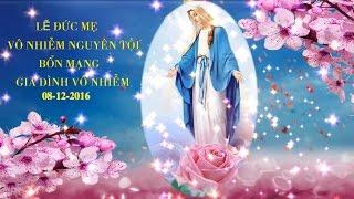 Lễ Đức Mẹ Vô Nhiễm Nguyên Tội. Bổn Mạng Gia Đình Vô Nhiễm 08-12-2016