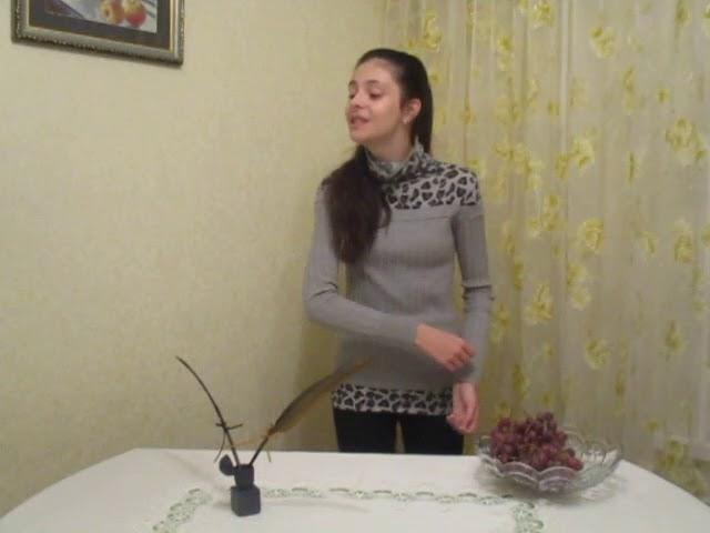Изображение предпросмотра прочтения – РузанаВенетикян читает произведение «Имя твоё» М.И.Цветаевой