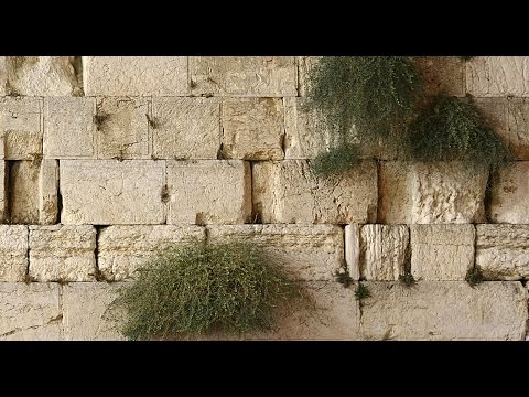 The Western Wall (Wailing Wall) - the Plaza of men and women. Jerusalem, Israel