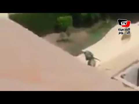 لحظة مطاردة الرجل الأخضر  بعد اقتحامه مدينة الإنتاج الإعلامي قبل مقتله  - نشر قبل 17 ساعة