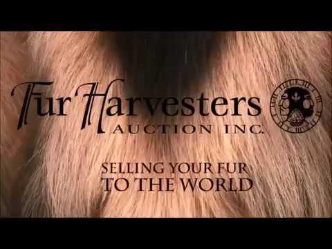 Fur Harvestors NWT Season 1 Ep 1